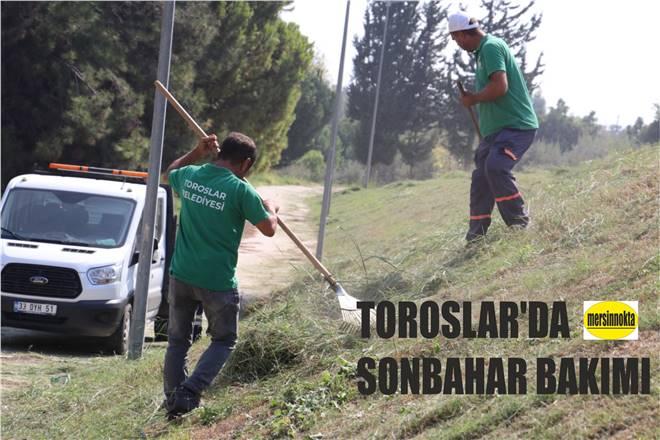 TOROSLAR'DA